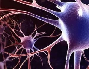 Изменения головного мозга при энцефалопатии