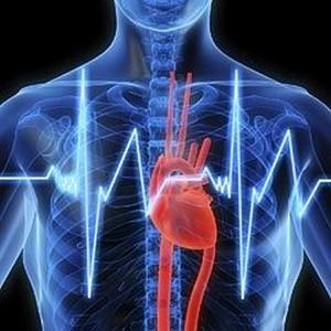 Нарушения в работе сердечнососудистой системы