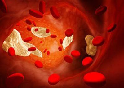 Частицы в крови