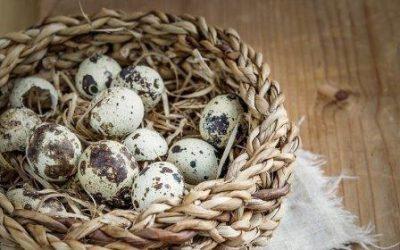 Яйца в лукошке
