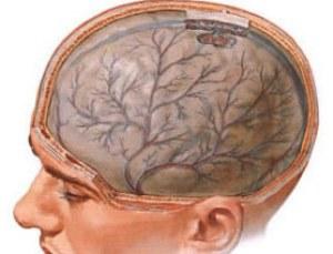 Растройства функций головного мозга
