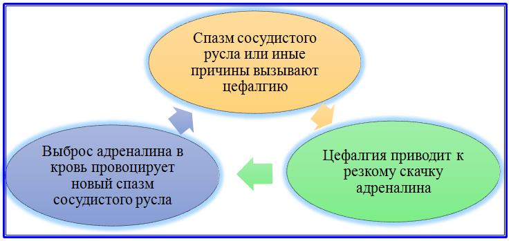 Диаграмма замкнутого цикла