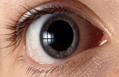 Зрачки глаз