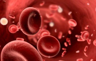 пониженный холестерин в крови как повысить